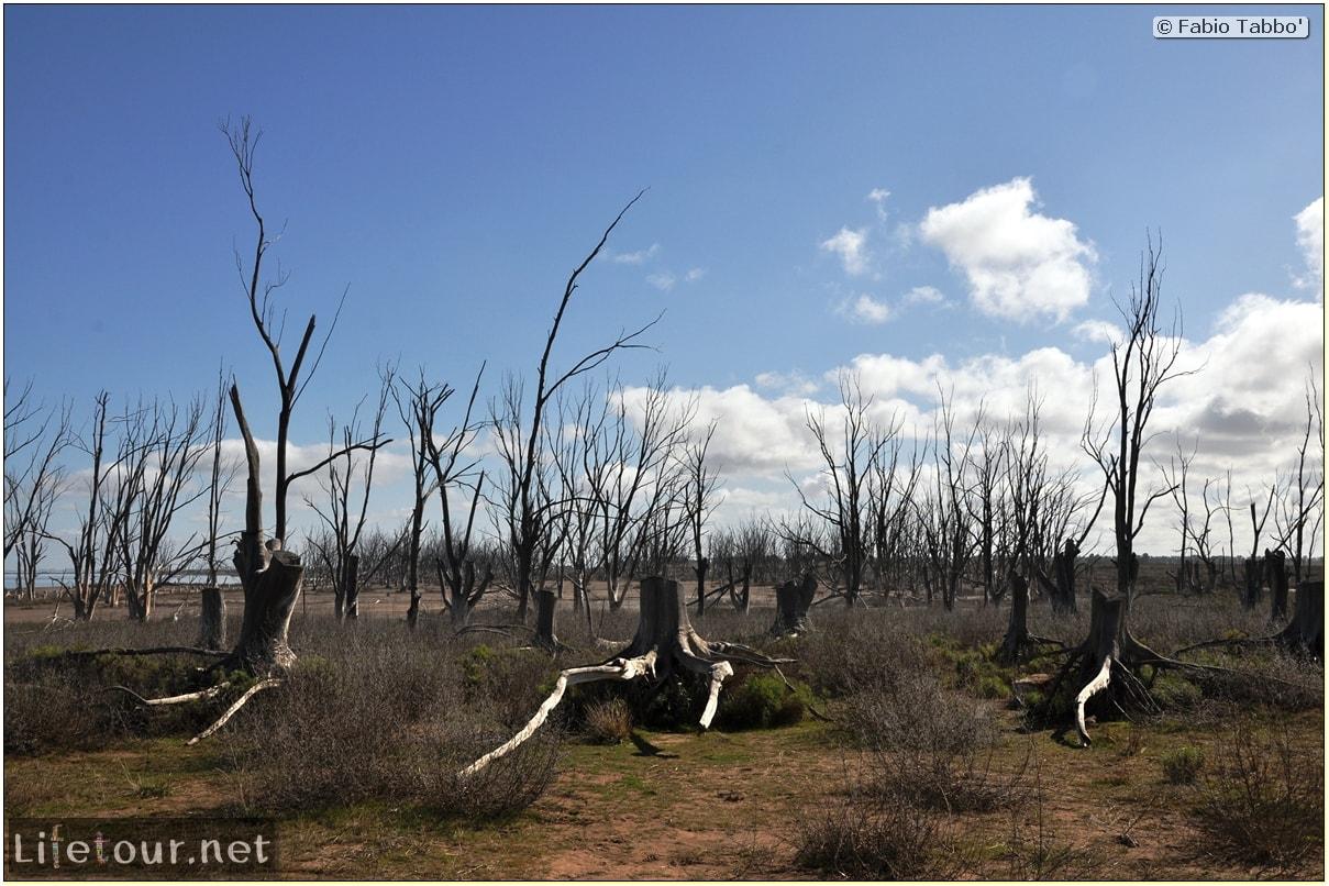 Epecuen-Epecuen-ghost-town-2.-Matadero-Municipal-abandoned-slaughterhouse-978
