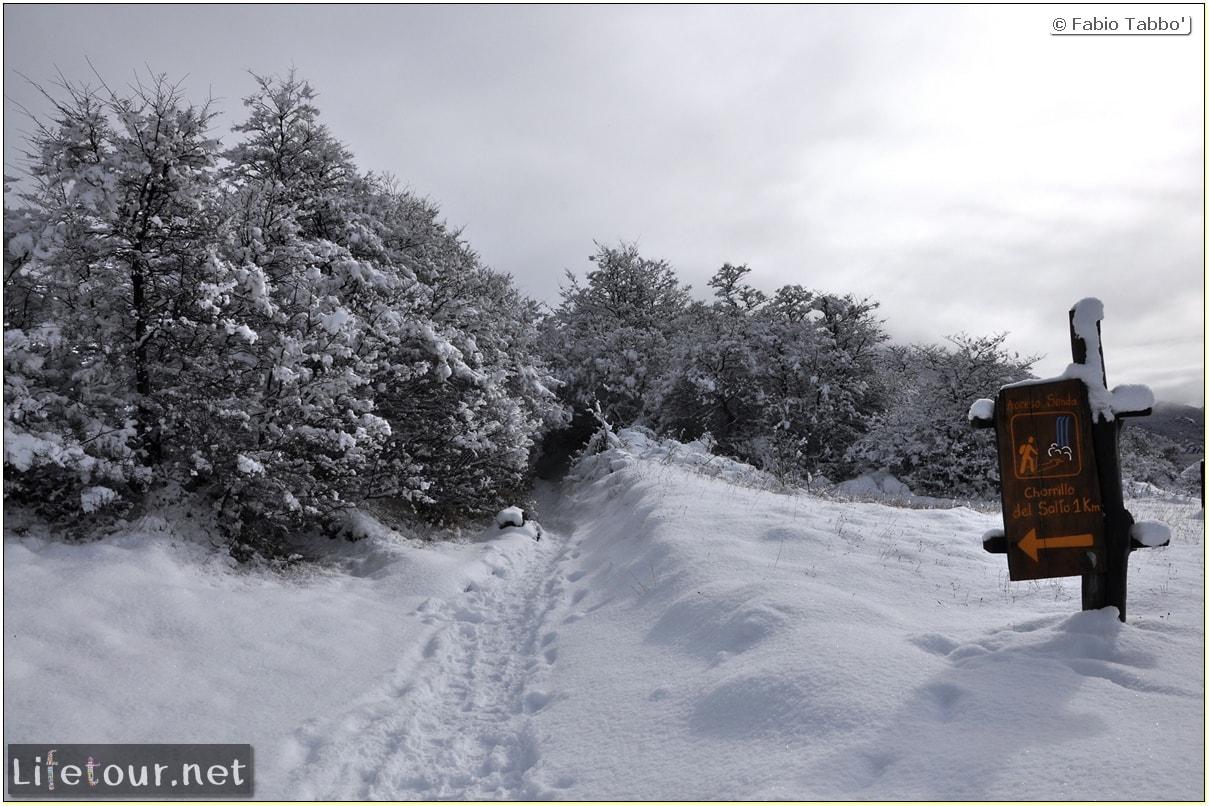 Fabios-LifeTour-Argentina-2015-July-August-El-Chalten-Trekking-1-Chorrillo-del-Salto-4498