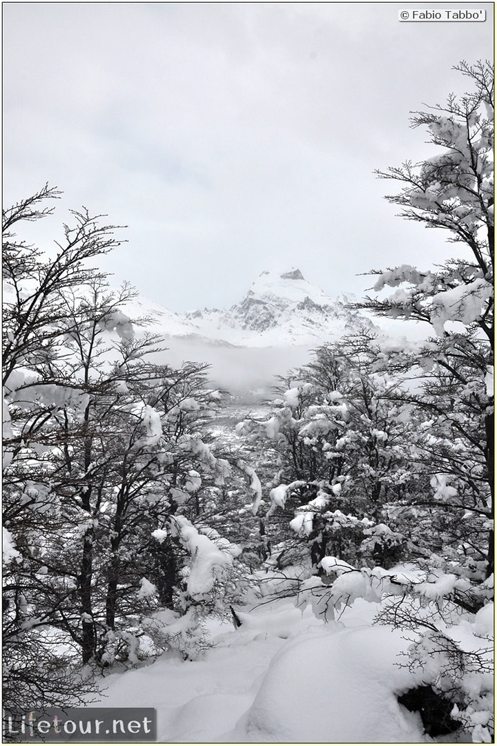 Fabios-LifeTour-Argentina-2015-July-August-El-Chalten-Trekking-3-Laguna-del-Torre-2891