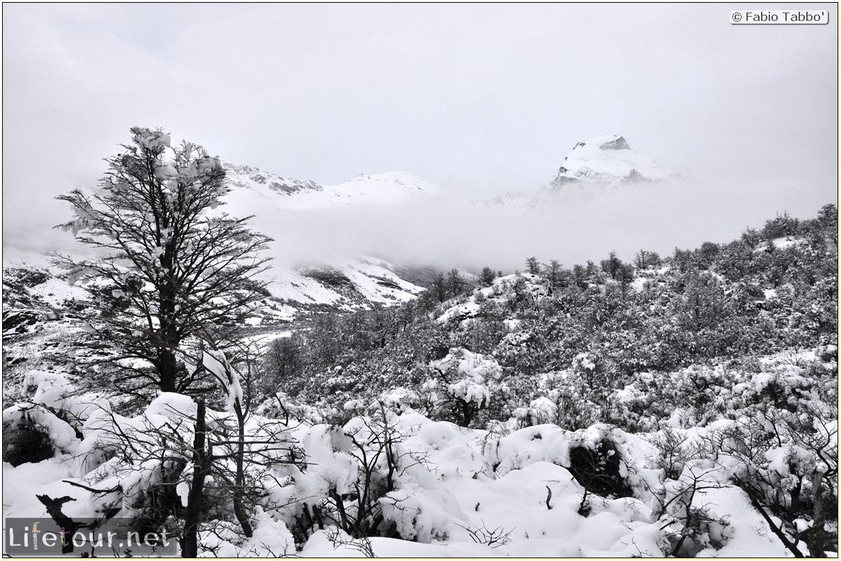 Fabios-LifeTour-Argentina-2015-July-August-El-Chalten-Trekking-3-Laguna-del-Torre-3263