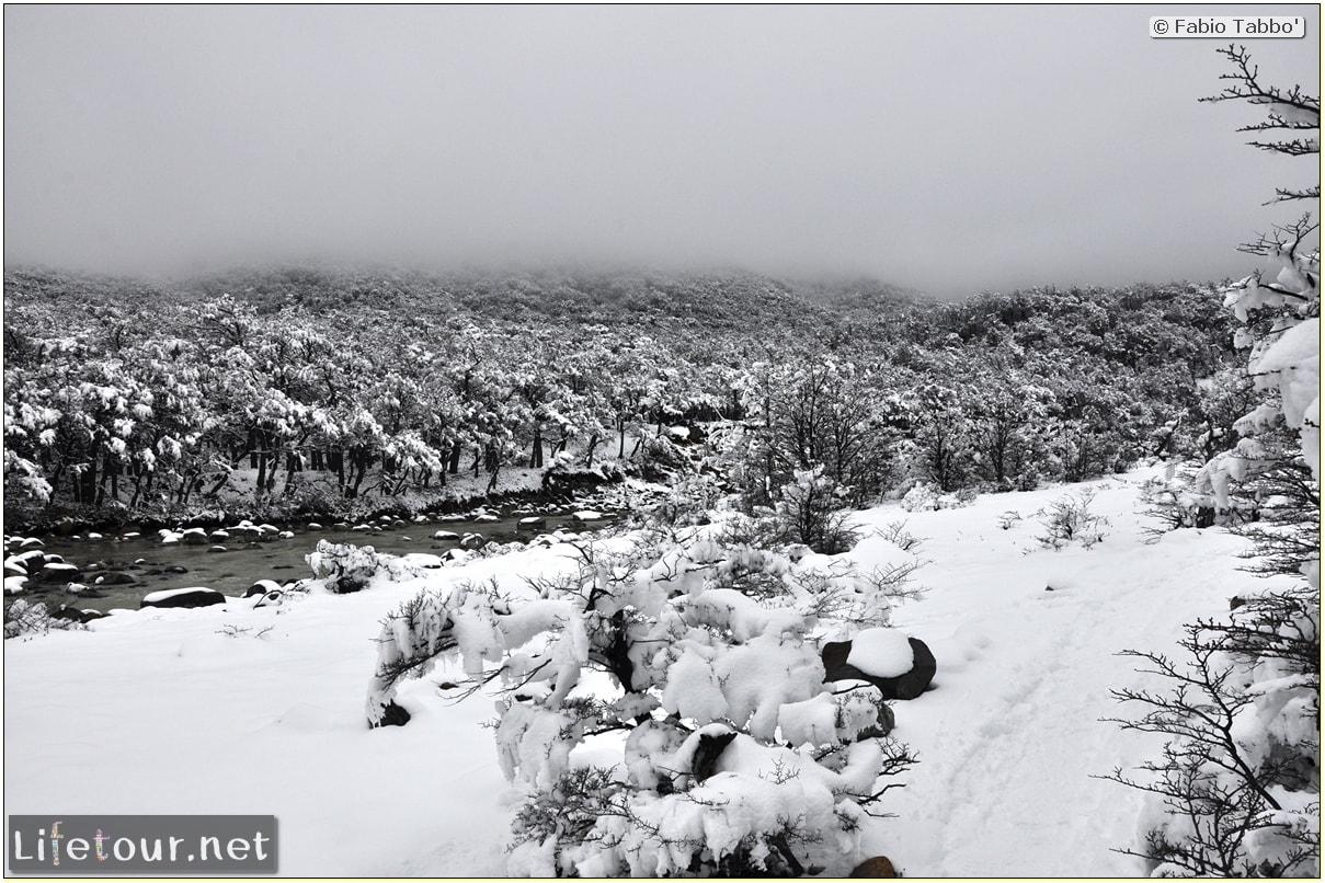 Fabios-LifeTour-Argentina-2015-July-August-El-Chalten-Trekking-3-Laguna-del-Torre-5304