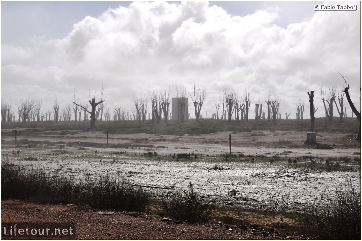 Fabios-LifeTour-Argentina-2015-July-August-Epecuen-Epecuen-ghost-town-1.-Bike-Trip-to-the-Epecuen-ghost-town-4339