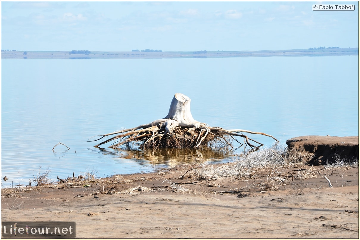 Fabios-LifeTour-Argentina-2015-July-August-Epecuen-Epecuen-ghost-town-1.-Bike-Trip-to-the-Epecuen-ghost-town-6902