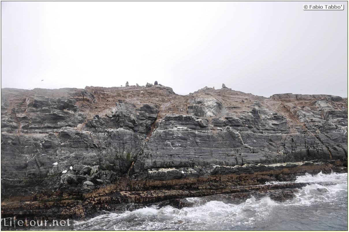 Fabios-LifeTour-Argentina-2015-July-August-Ushuaia-Beagle-Channel-2-Sea-lions-5008