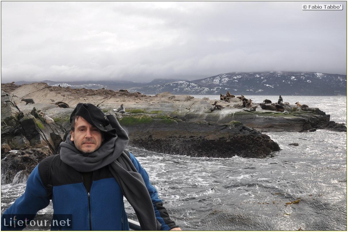 Fabios-LifeTour-Argentina-2015-July-August-Ushuaia-Beagle-Channel-2-Sea-lions-9340