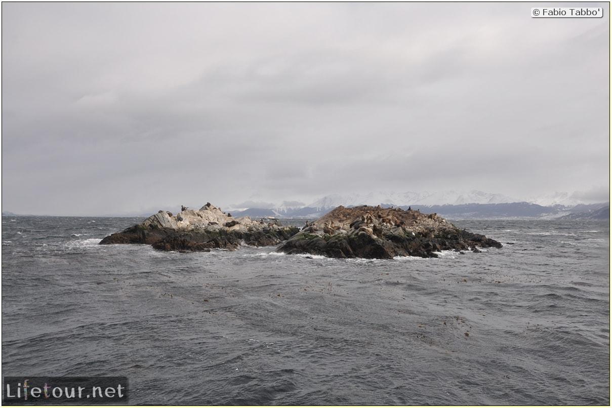 Fabios-LifeTour-Argentina-2015-July-August-Ushuaia-Beagle-Channel-2-Sea-lions-9923