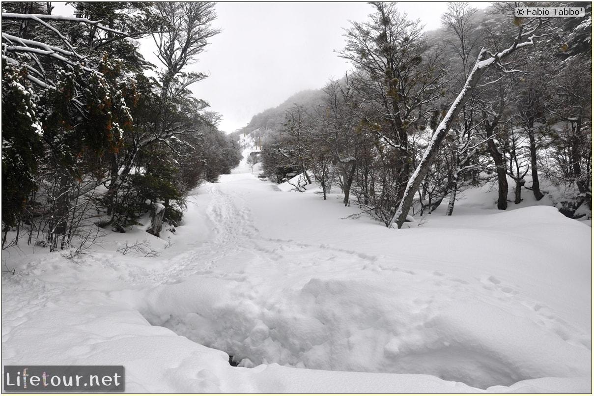 Fabios-LifeTour-Argentina-2015-July-August-Ushuaia-Glacier-Martial-1-Trekking-towards-the-Glacier-Martial-1635