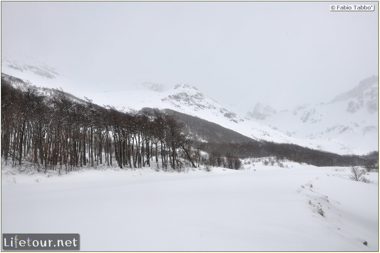 Fabios-LifeTour-Argentina-2015-July-August-Ushuaia-Glacier-Martial-1-Trekking-towards-the-Glacier-Martial-4881