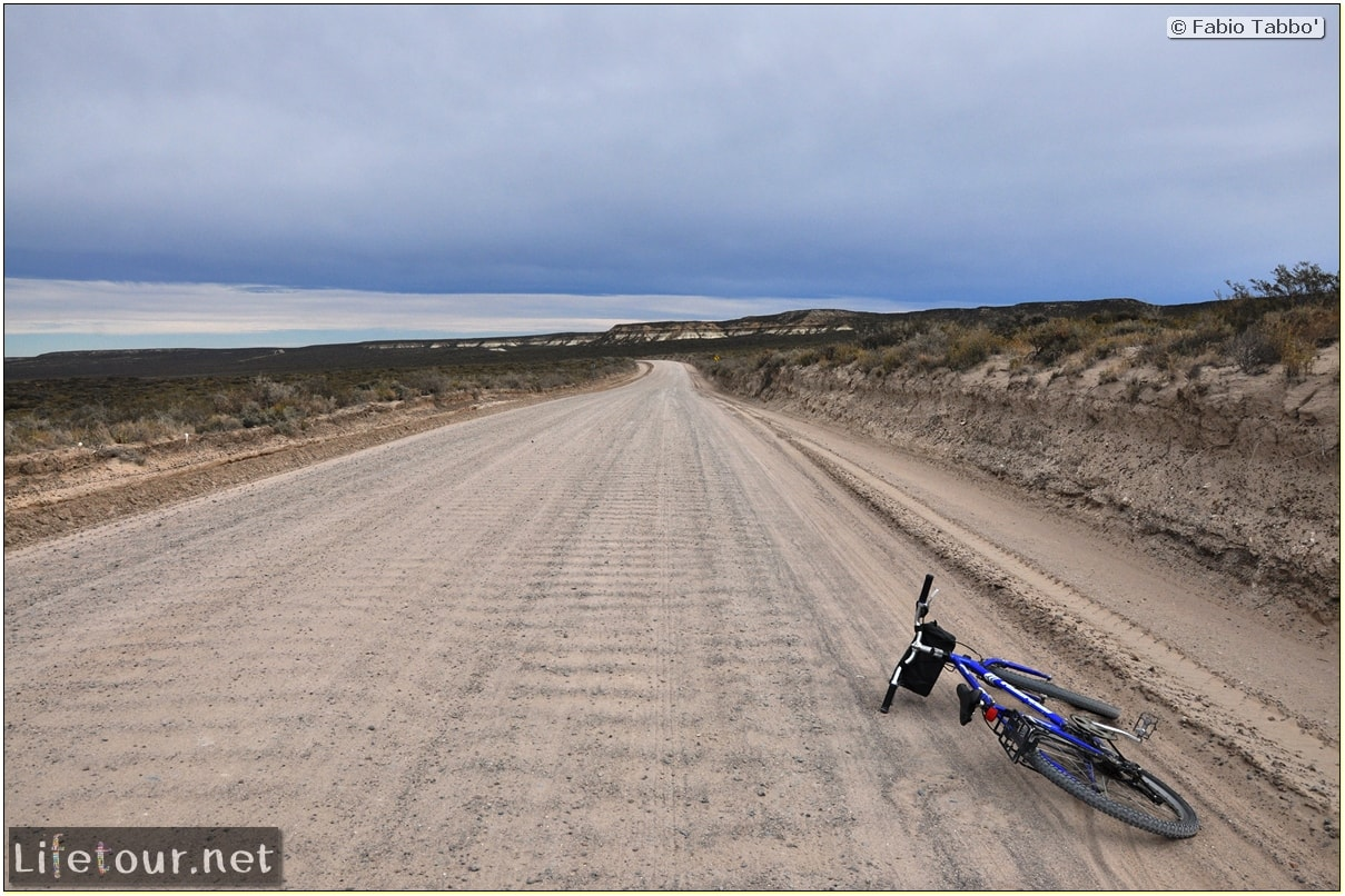 Puerto-Madryn-El-Doradillo-whale-watching-1.-Bicycle-trip-to-El-Doradillo-839-cover-1