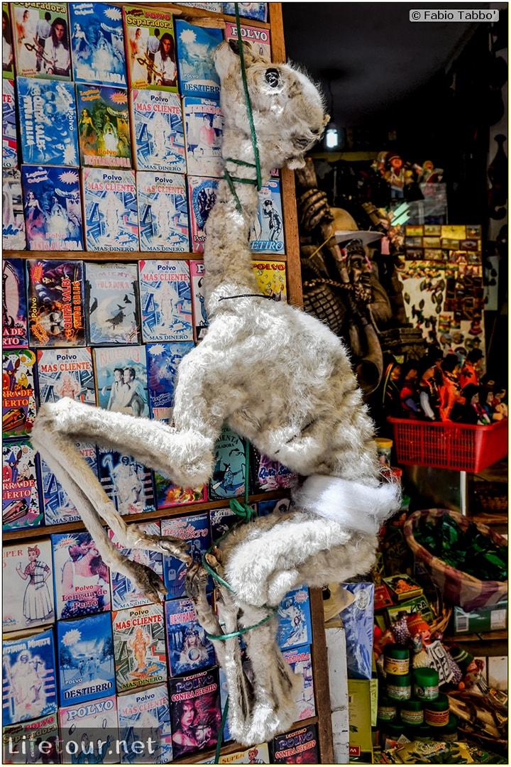 Fabio_s-LifeTour---Bolivia-(2015-March)---La-Paz---Witches-Market-(Mercado-de-las-Brujas)---6599-cover