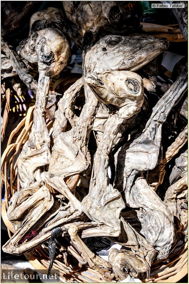 Fabio_s-LifeTour---Bolivia-(2015-March)---La-Paz---Witches-Market-(Mercado-de-las-Brujas)---6898-cover