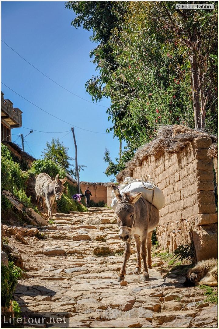 Fabio_s-LifeTour---Bolivia-(2015-March)---Titicaca---Titicaca-Lake---1.-Isla-del-sol---6926