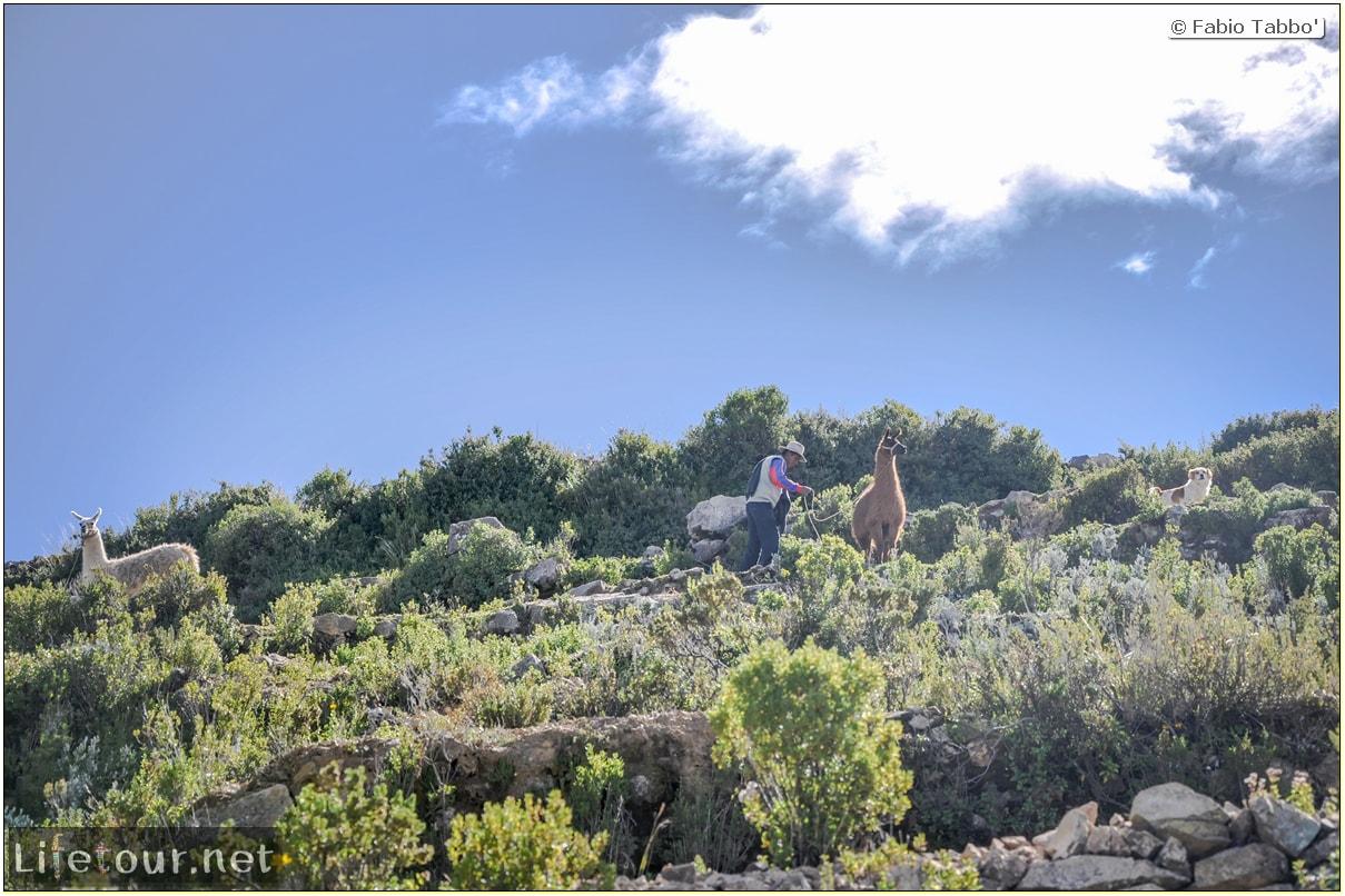 Fabio_s-LifeTour---Bolivia-(2015-March)---Titicaca---Titicaca-Lake---1.-Isla-del-sol---7565