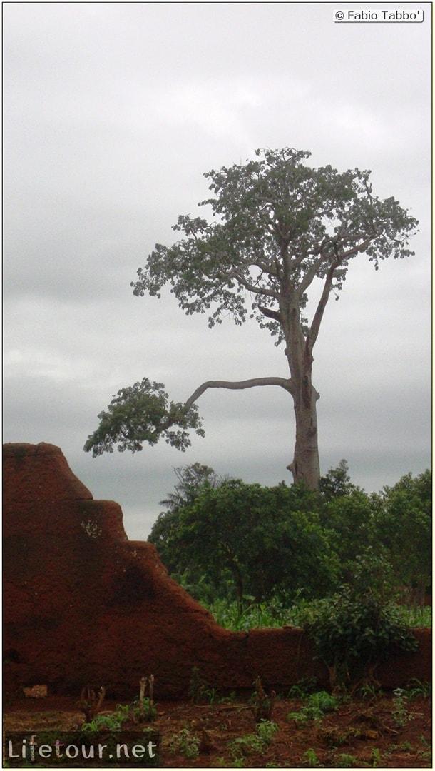 Fabio's LifeTour - Benin (2013 May) - Abomey - Royal Palace - 1565
