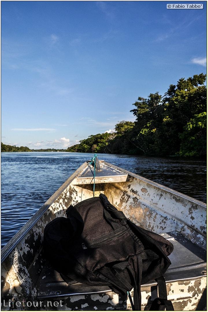 Fabio's LifeTour - Brazil (2015 April-June and October) - Manaus - Amazon Jungle - Piranha fishing - 10479