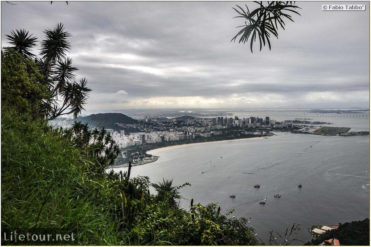 Brazil (2015) - Rio De Janeiro - Trilha Do P¦o De Açúcar - 4- on top of the mountain - 9599
