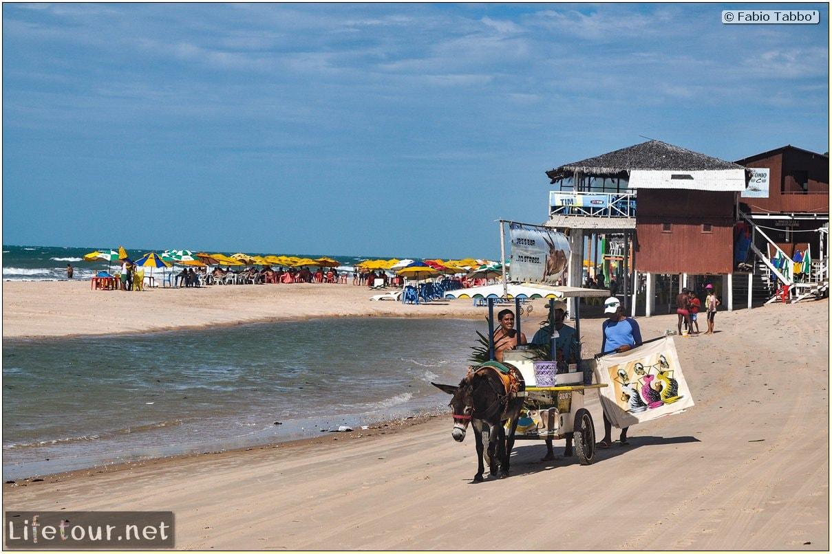 Fabio's LifeTour - Brazil (2015 April-June and October) - Fortaleza - Canoa Quebrada - 7880