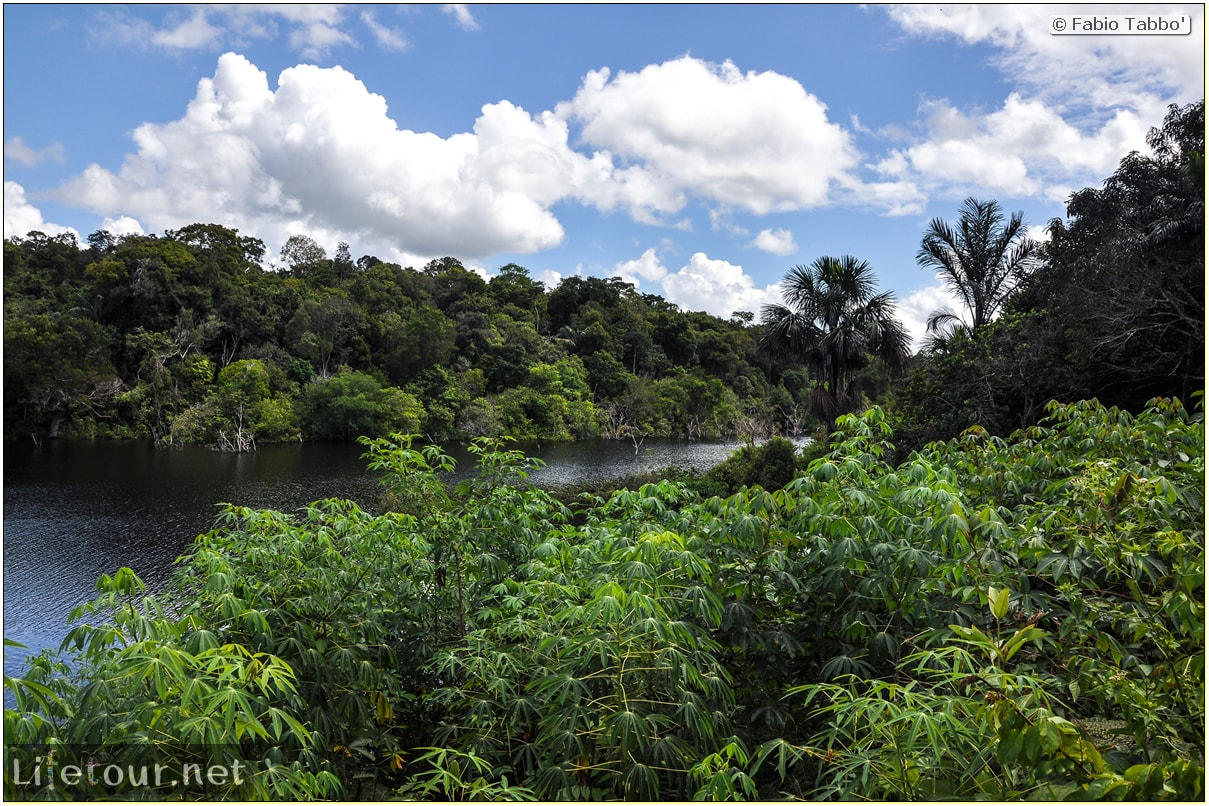 Fabio's LifeTour - Brazil (2015 April-June and October) - Manaus - Amazon Jungle - Cruising the Amazon river- other pictures - 10264