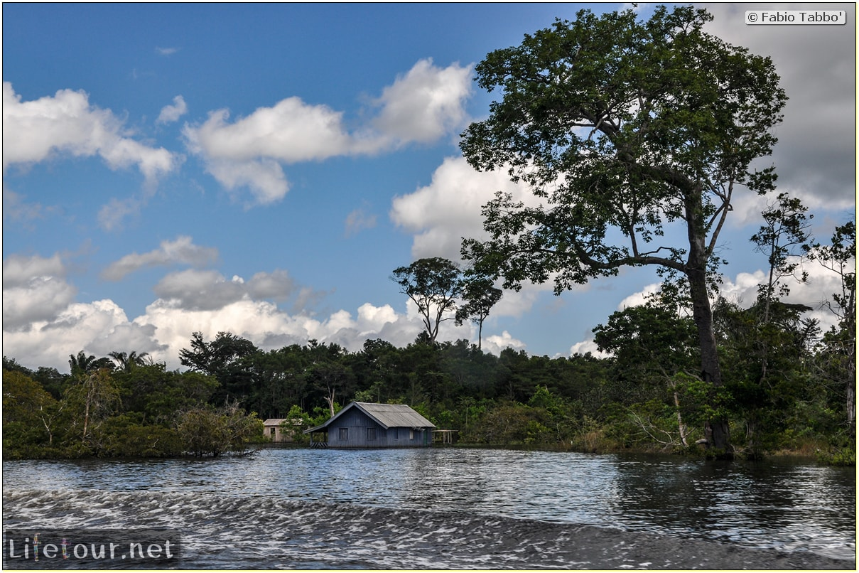 Fabio's LifeTour - Brazil (2015 April-June and October) - Manaus - Amazon Jungle - Cruising the Amazon river- other pictures - 10534