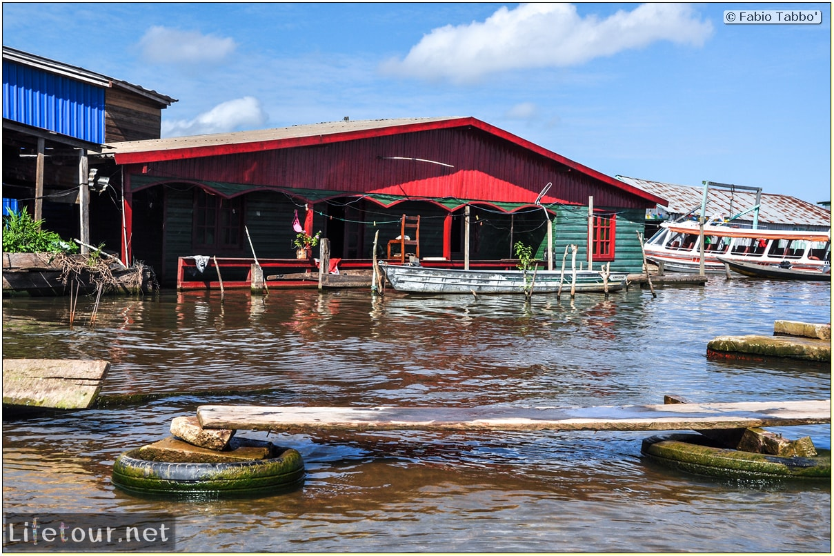 Fabio's LifeTour - Brazil (2015 April-June and October) - Manaus - Amazon Jungle - Cruising the Amazon river- other pictures - 9407