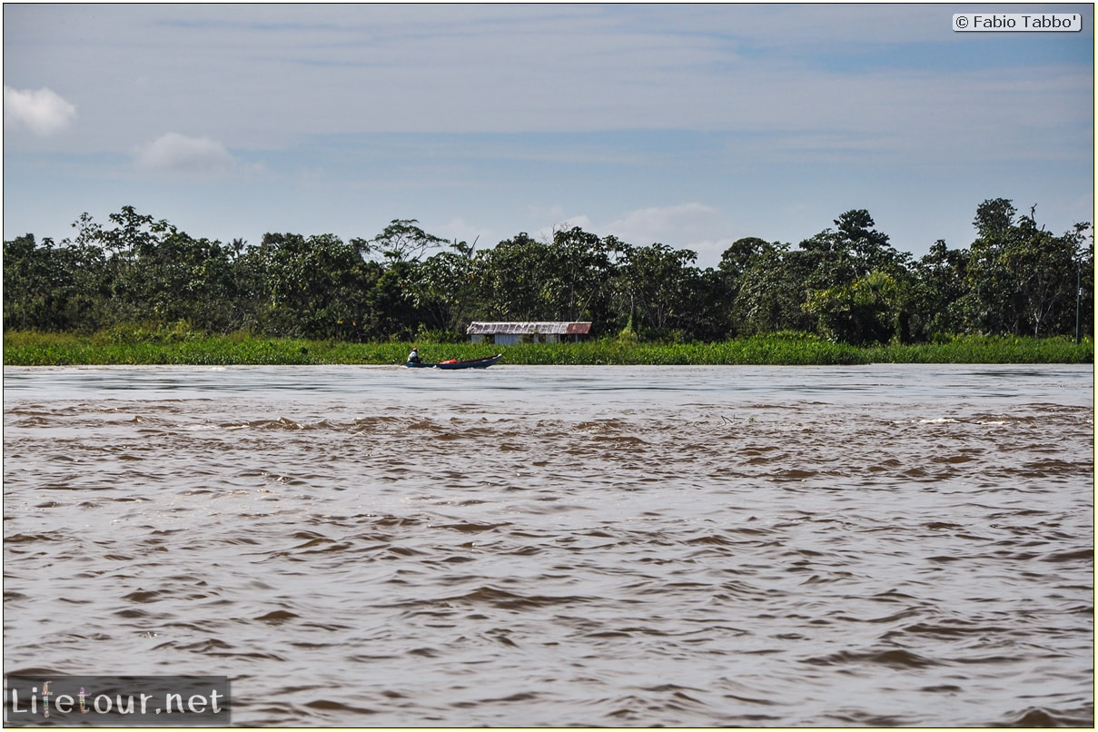 Fabio's LifeTour - Brazil (2015 April-June and October) - Manaus - Amazon Jungle - Driving a motorboat on the Amazon river - 9121
