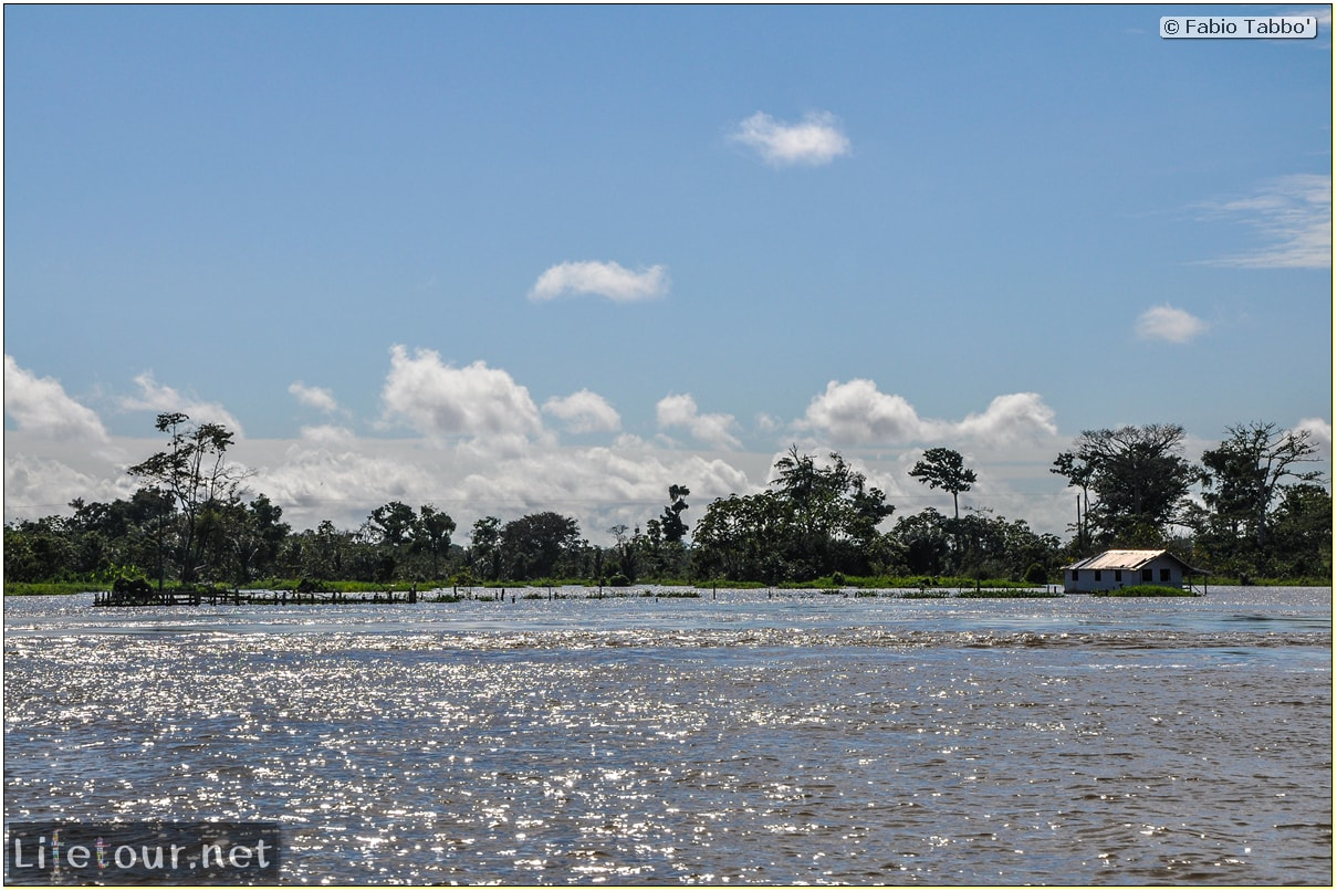Fabio's LifeTour - Brazil (2015 April-June and October) - Manaus - Amazon Jungle - Driving a motorboat on the Amazon river - 9168