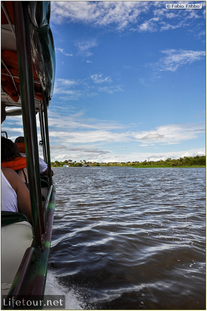 Fabio's LifeTour - Brazil (2015 April-June and October) - Manaus - Amazon Jungle - Encontro de Agua - 10280
