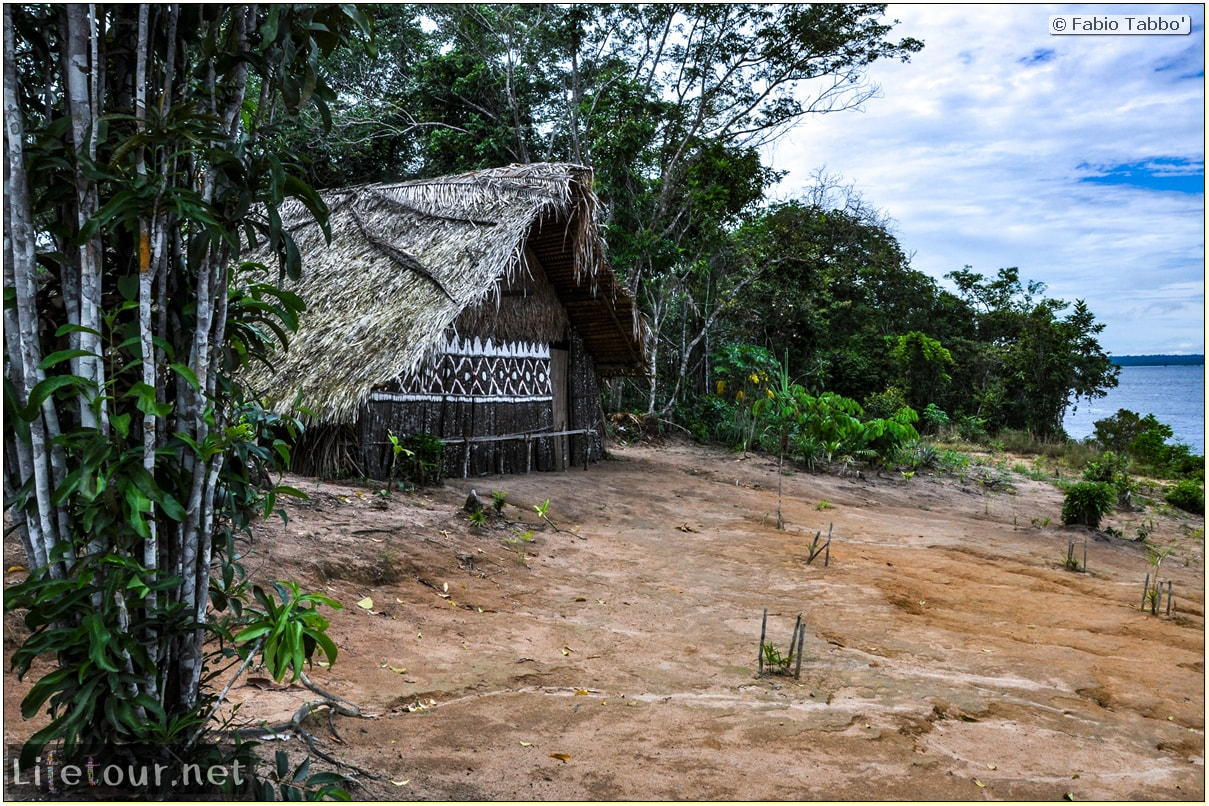 Fabio's LifeTour - Brazil (2015 April-June and October) - Manaus - Amazon Jungle - Indios village - 1- The village - 6350