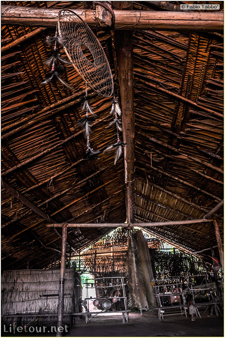 Fabio's LifeTour - Brazil (2015 April-June and October) - Manaus - Amazon Jungle - Indios village - 1- The village - 6834