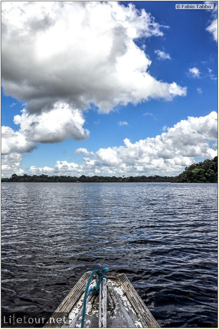 Fabio's LifeTour - Brazil (2015 April-June and October) - Manaus - Amazon Jungle - Jungle trekking - 1-boat trip - 10499