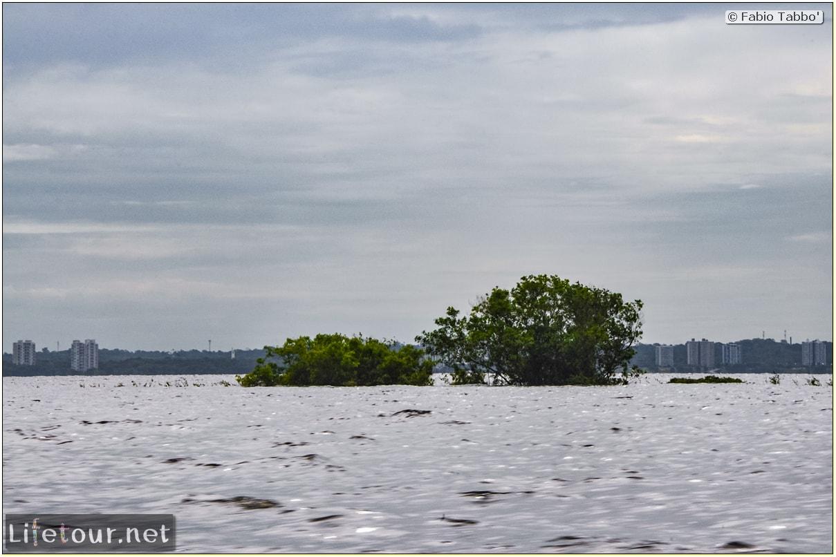 Fabio's LifeTour - Brazil (2015 April-June and October) - Manaus - Amazon Jungle - Manaus bridge - 3032