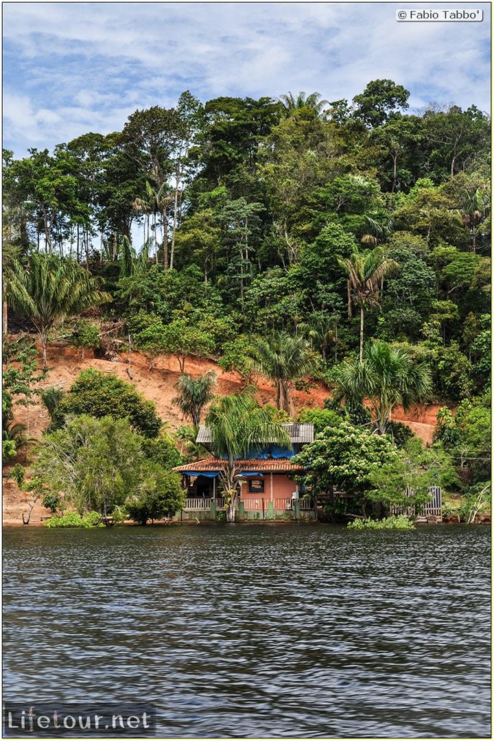 Fabio's LifeTour - Brazil (2015 April-June and October) - Manaus - Amazon Jungle - Parque do Janauary - 1-trip (Rio Solimoes) - 10045