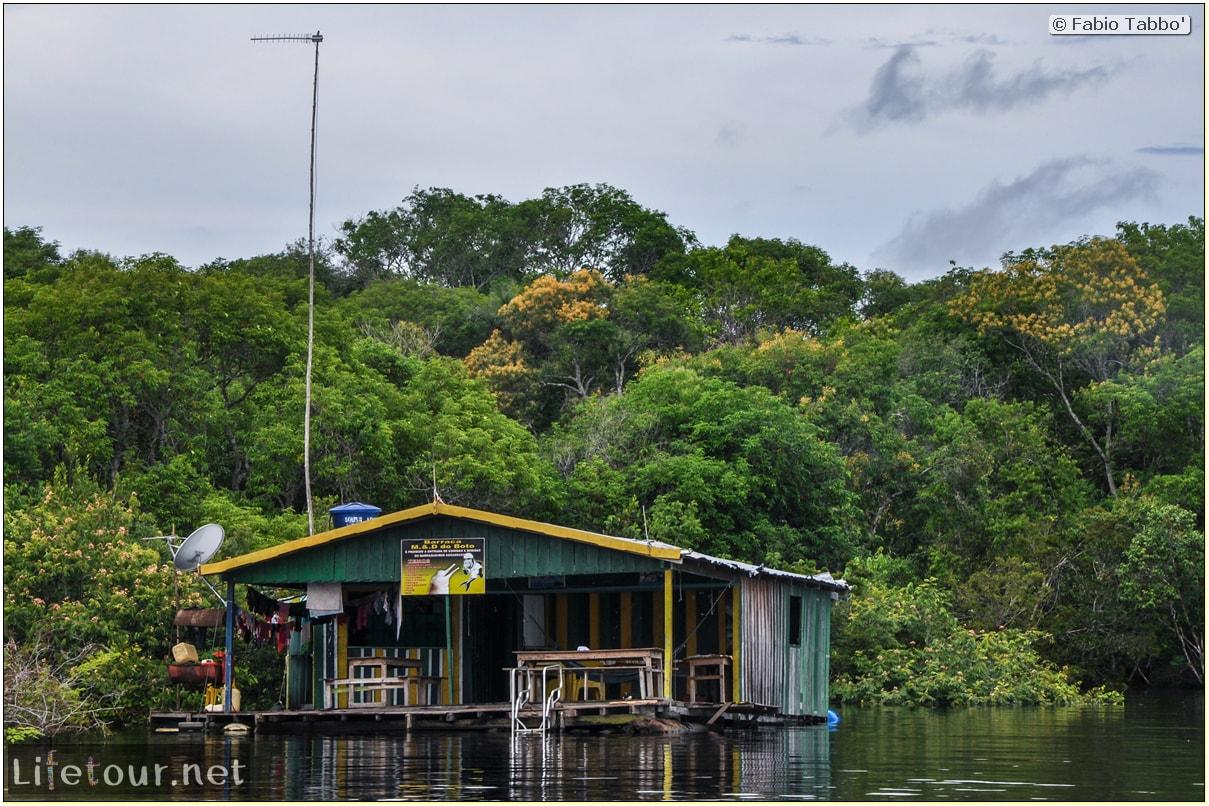 Fabio's LifeTour - Brazil (2015 April-June and October) - Manaus - Amazon Jungle - Pink dolphin petting (Botos encounter) - 4149