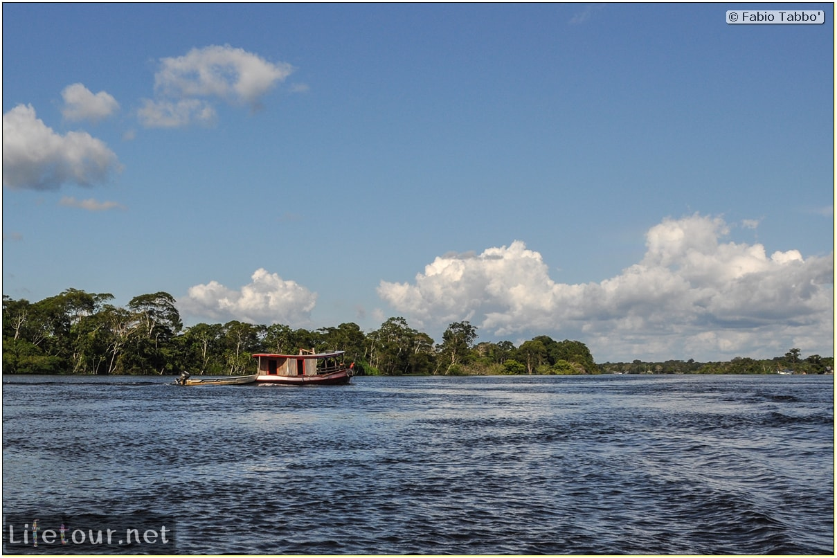 Fabio's LifeTour - Brazil (2015 April-June and October) - Manaus - Amazon Jungle - Piranha fishing - 8951