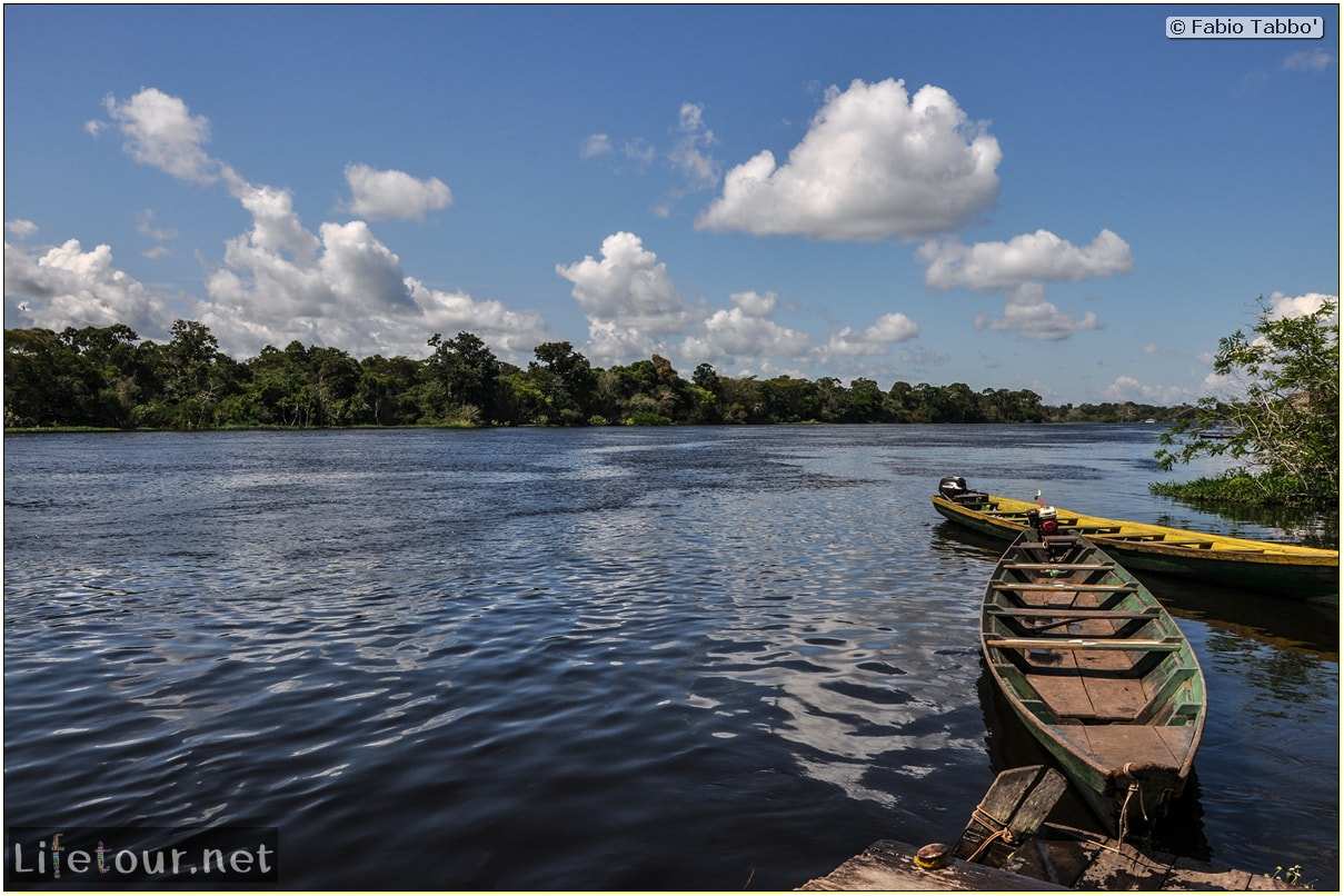 Fabio's LifeTour - Brazil (2015 April-June and October) - Manaus - Amazon Jungle - Sleeping in jungle lodge - 11100