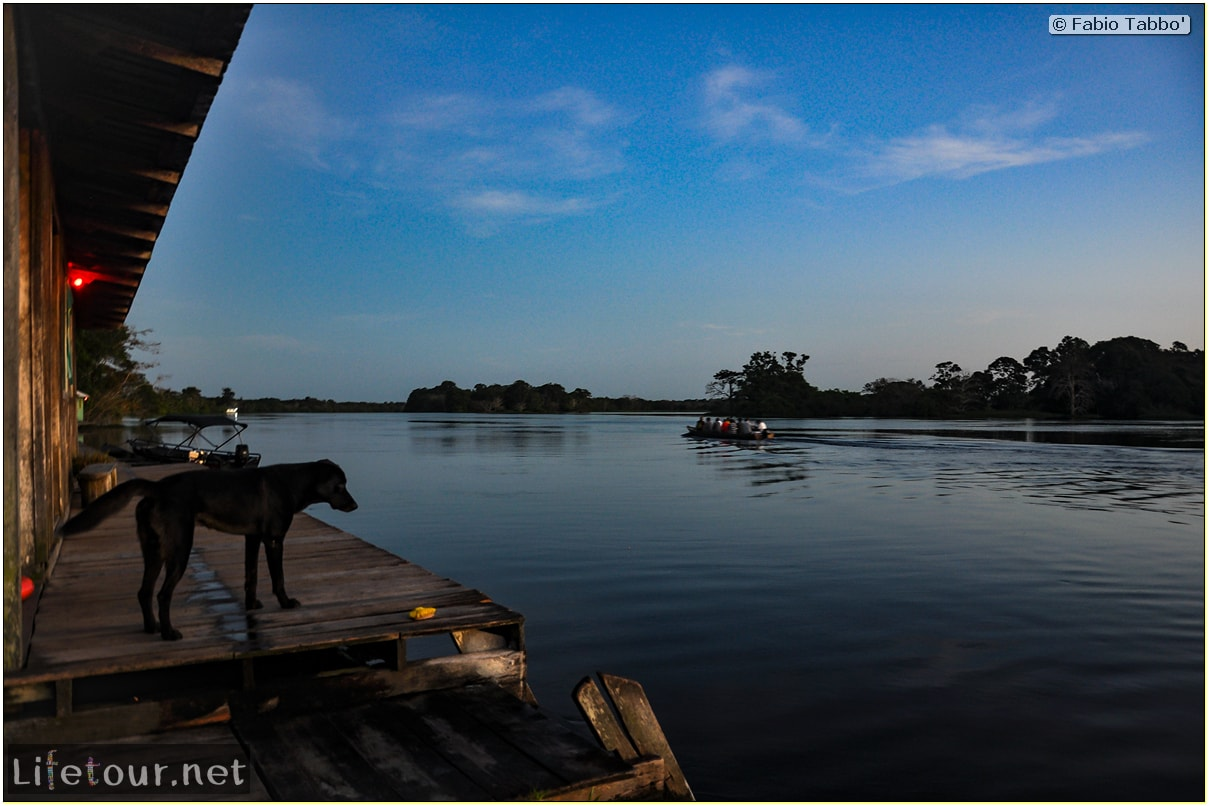 Fabio's LifeTour - Brazil (2015 April-June and October) - Manaus - Amazon Jungle - Sunrise on the Amazon - 9288 cover