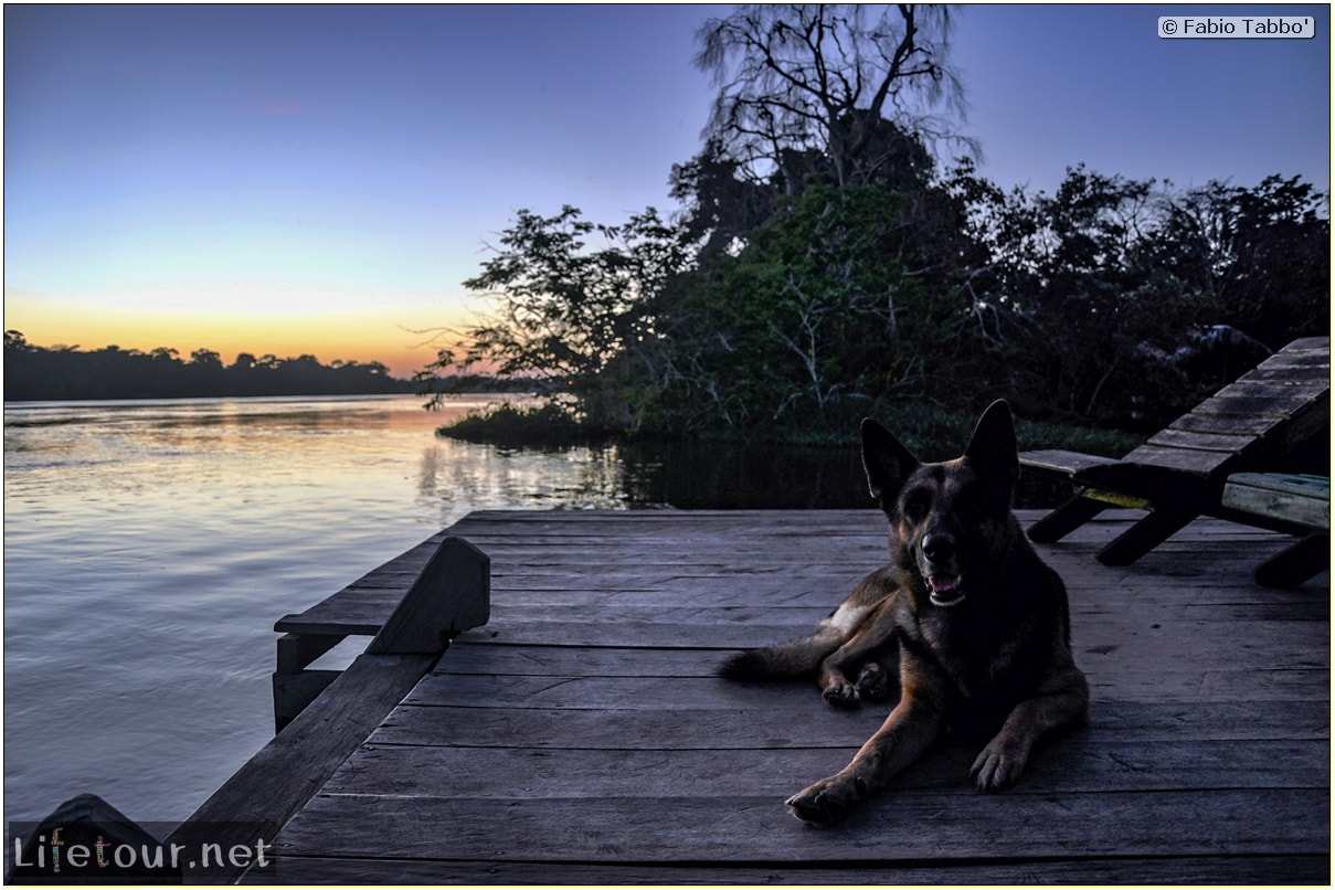 Fabio's LifeTour - Brazil (2015 April-June and October) - Manaus - Amazon Jungle - Sunrise on the Amazon - 9358 cover