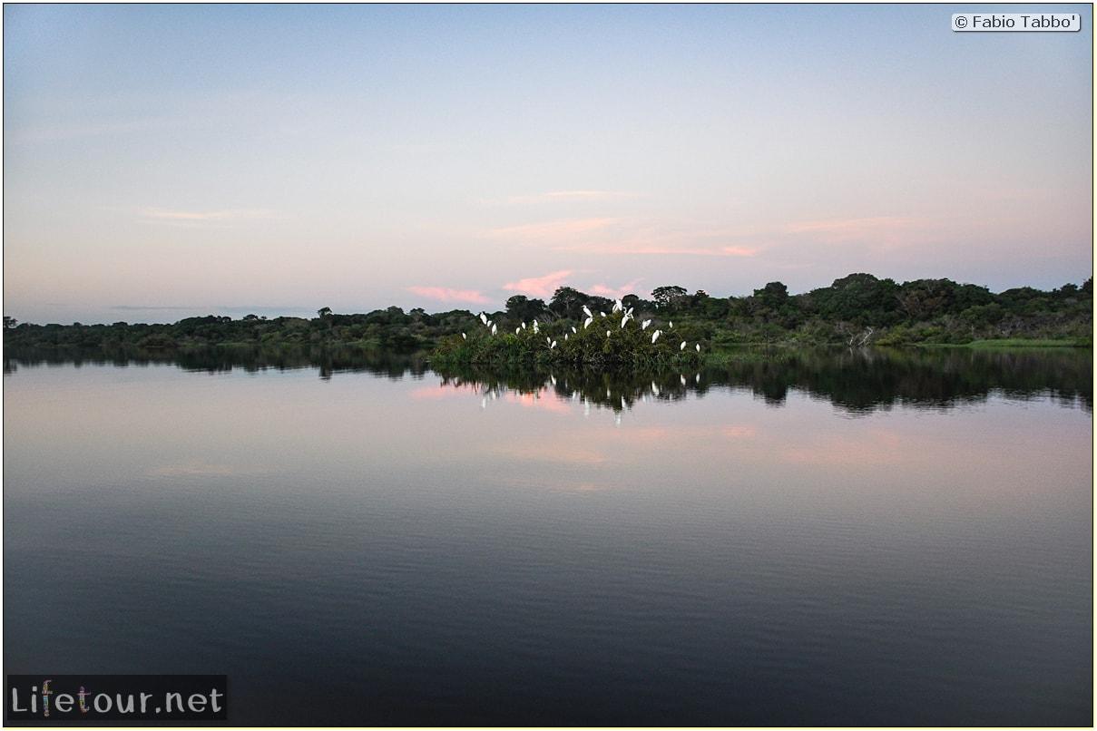 Fabio's LifeTour - Brazil (2015 April-June and October) - Manaus - Amazon Jungle - Sunrise on the Amazon - 9878 cover
