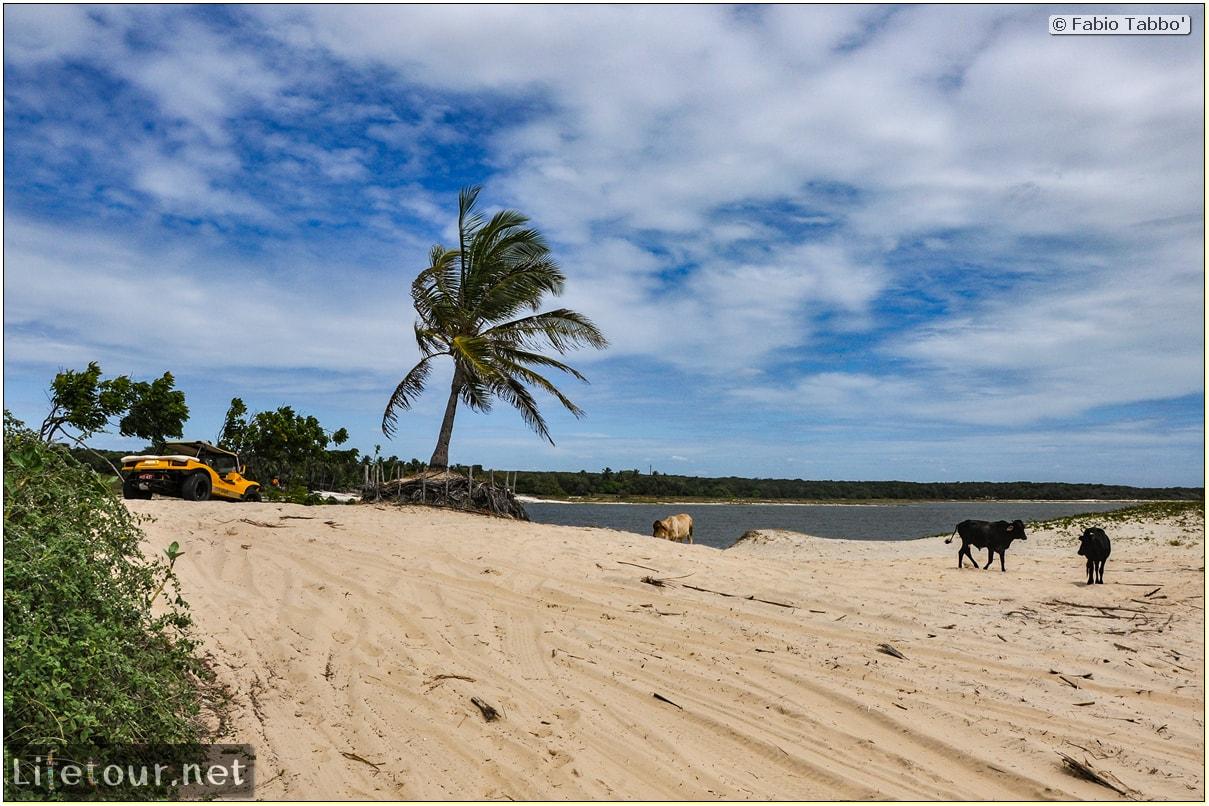 Fabio's LifeTour - Brazil (2015 April-June and October) - Morro Branco - Dune Buggy racing - 6737