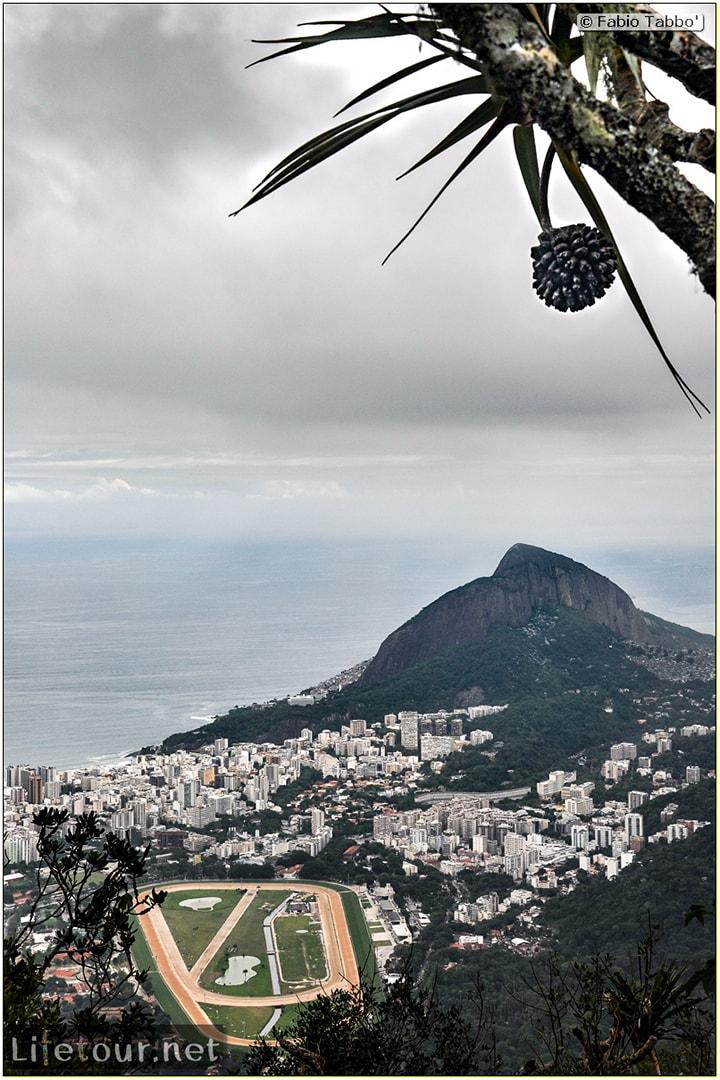 Fabio's LifeTour - Brazil (2015 April-June and October) - Rio De Janeiro - Corcovado - Level 2 - Christ statue - 7674