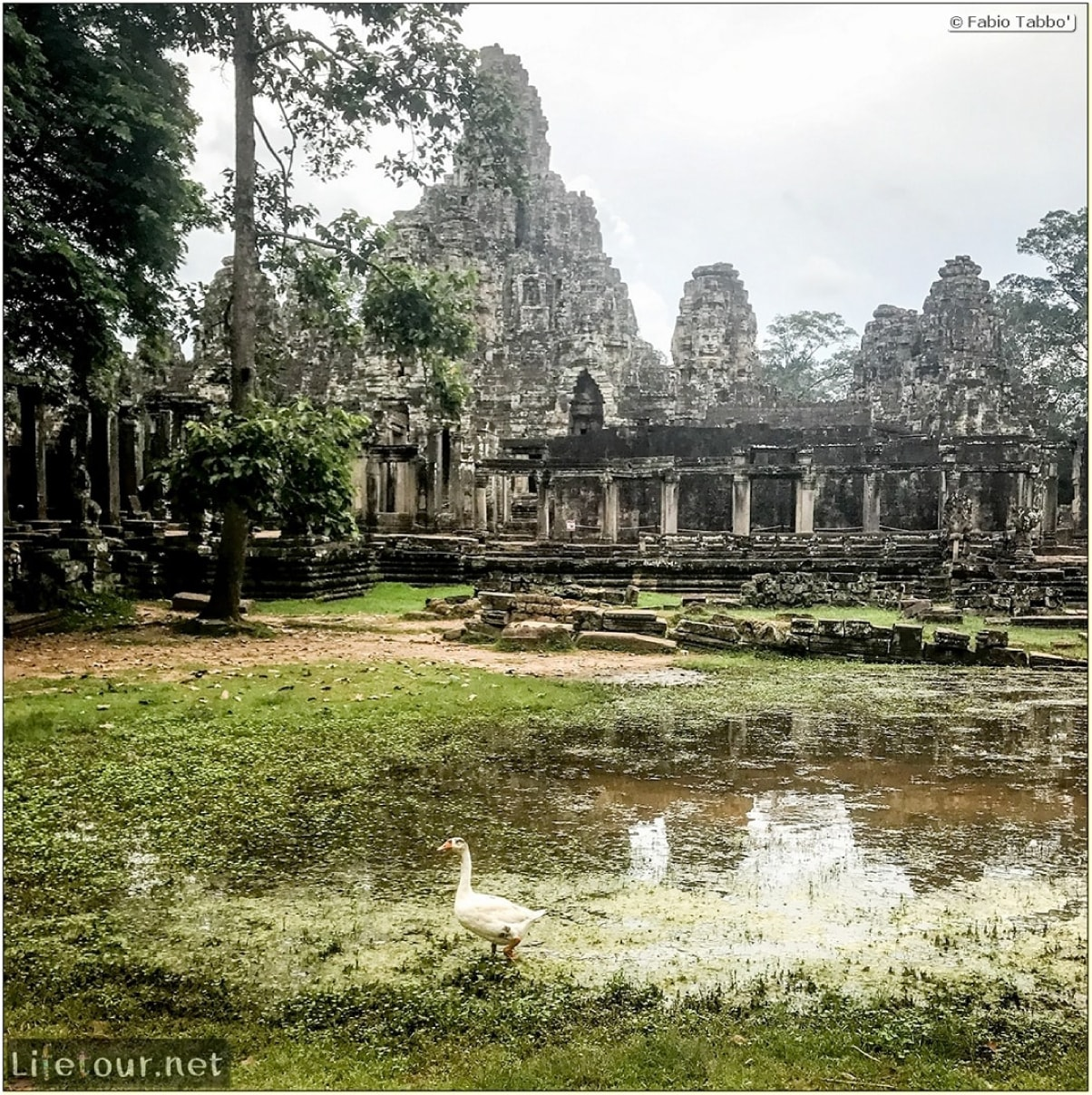 Fabio_s-LifeTour-Cambodia-2017-July-August-Siem-Reap-Angkor-Angkor-temples-Bayon-temple-18636-cover