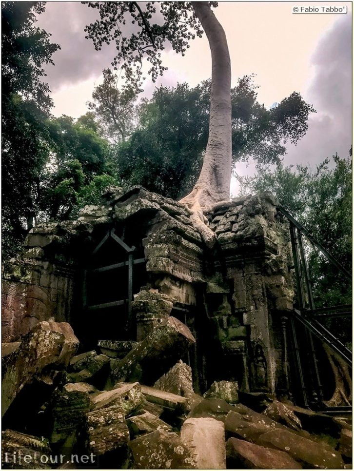 Fabio_s-LifeTour---Cambodia-(2017-July-August)---Siem-Reap-(Angkor)---Angkor-temples---Ta-Prohm-temple---18622