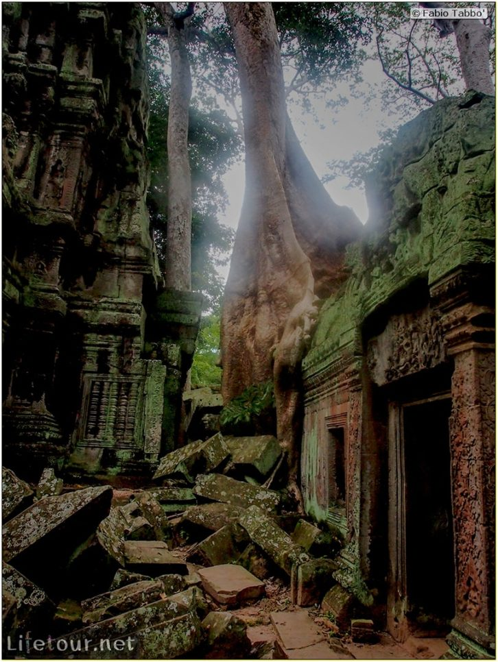Fabio_s-LifeTour---Cambodia-(2017-July-August)---Siem-Reap-(Angkor)---Angkor-temples---Ta-Prohm-temple---20249