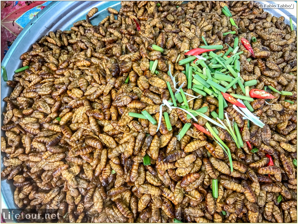 Fabio_s-LifeTour---Cambodia-(2017-July-August)---Skun---Other-edible-insects-(scorpions,-beetles-etc.)---18404