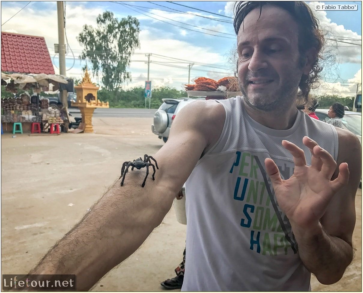 Fabio_s-LifeTour---Cambodia-(2017-July-August)---Skun---Playing-with-tarantulas-(and-eating-them-afterwards)---18384