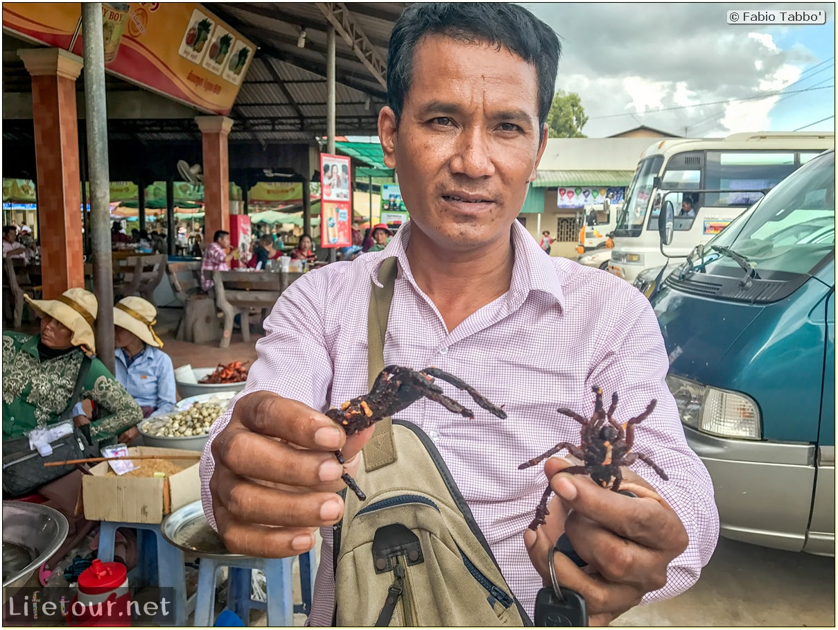 Fabio_s-LifeTour---Cambodia-(2017-July-August)---Skun---Playing-with-tarantulas-(and-eating-them-afterwards)---18388