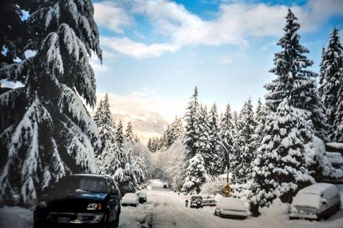 Fabio_s-LifeTour---Canada-(1998-November---1999-February)---Vancouver---Blue-Ridge-(home)---13413 cover