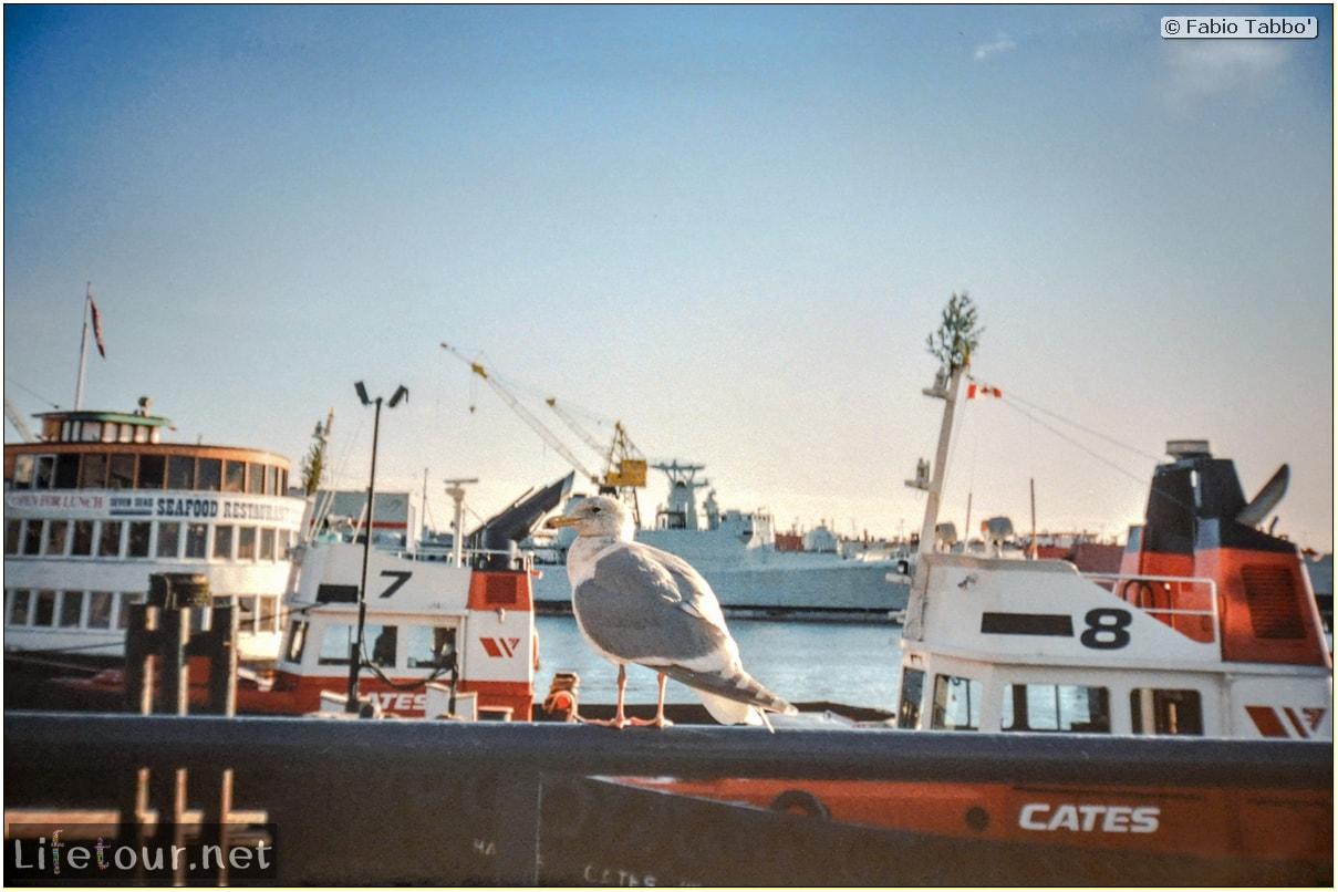 Fabio_s-LifeTour---Canada-(1998-November---1999-February)---Vancouver---City-center---13431 cover