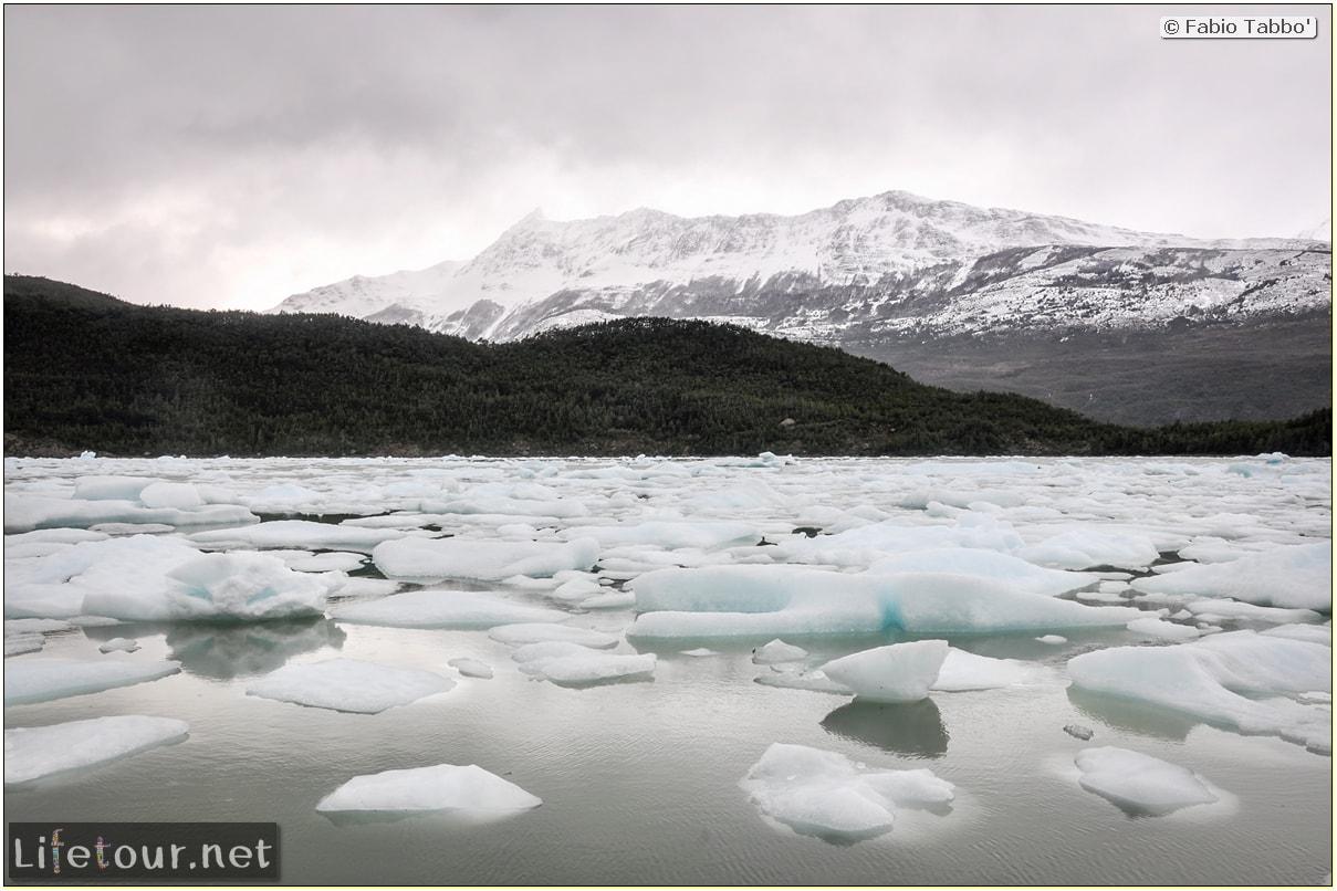 Fabio_s-LifeTour---Chile-(2015-September)---Park-O'higgins-–-glacier-Balmaceda---2--Trekking-to-glacier---6082