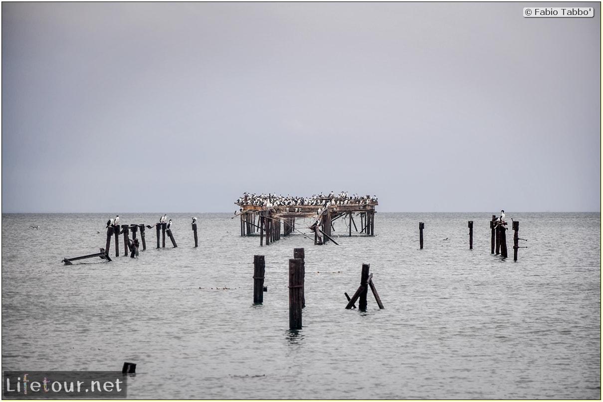 Fabio_s-LifeTour---Chile-(2015-September)---Punta-Arenas---Plaza-Fundacional-(waterfront)---4952